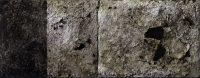 alice leonini asfalto 13