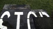 alice leonini asfalto 17
